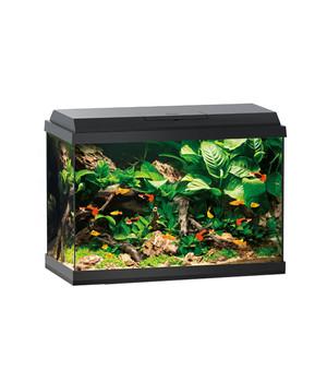 kleines aquarium f r anf nger online kaufen dehner. Black Bedroom Furniture Sets. Home Design Ideas