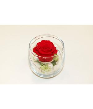 konservierte rosen t uschend echt dehner. Black Bedroom Furniture Sets. Home Design Ideas