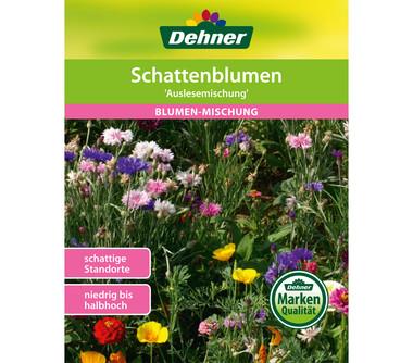Dehner Samen Blumenmischung 'Schattenblumen'